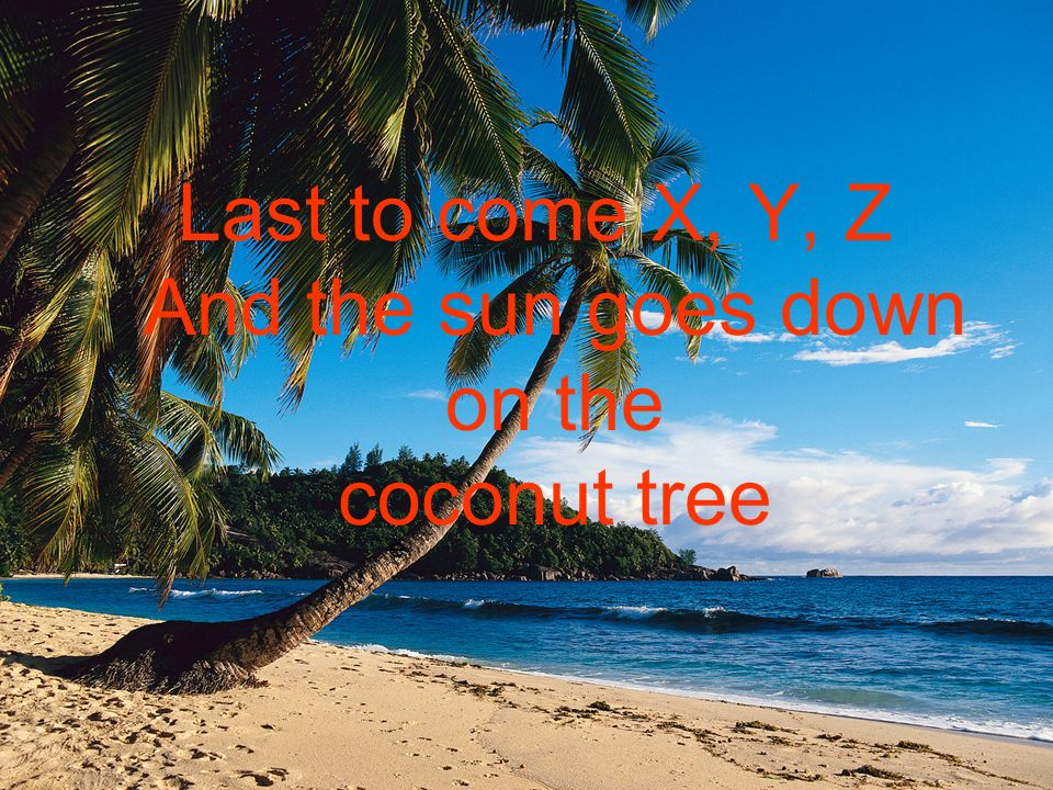 e Last to come X, Y, Z And the sun goes down on the coconut tree