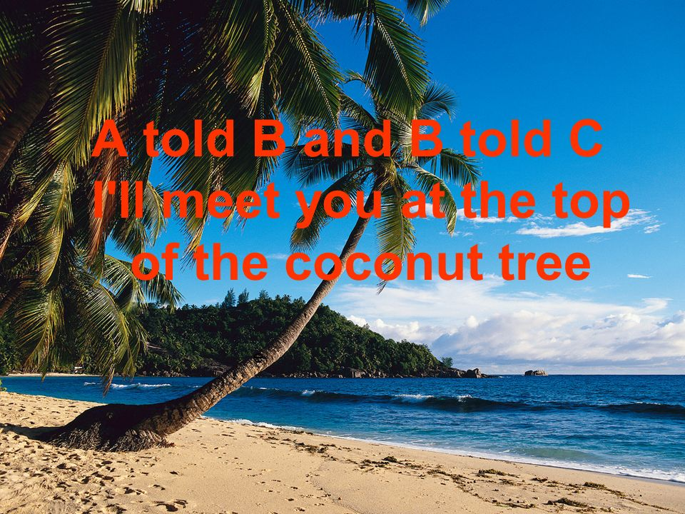 e A told B and B told C I ll meet you at the top of the coconut tree