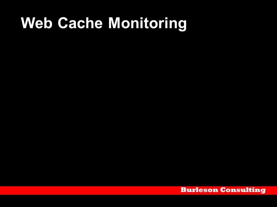 Web Cache Monitoring