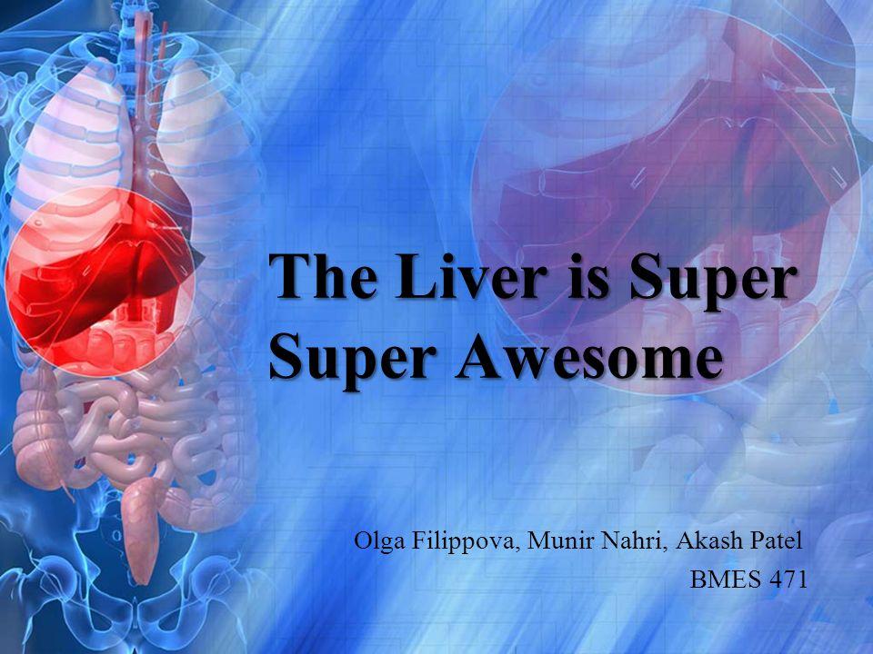 The Liver is Super Super Awesome Olga Filippova, Munir Nahri, Akash Patel BMES 471