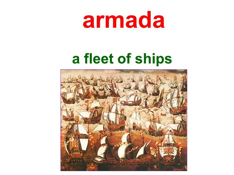 a fleet of ships armada