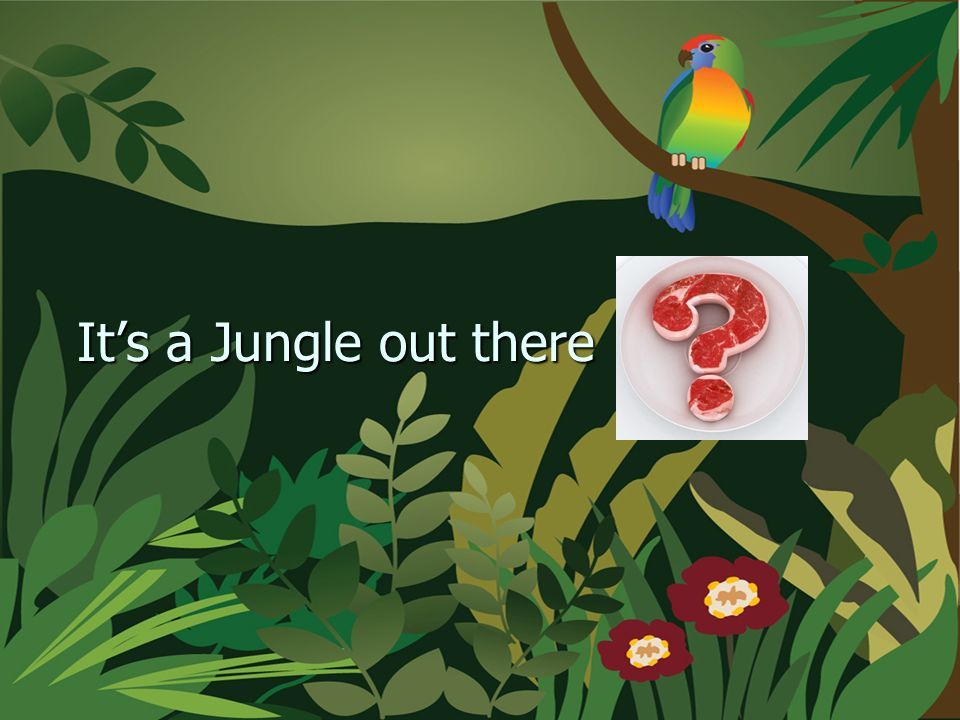 Its a Jungle out there