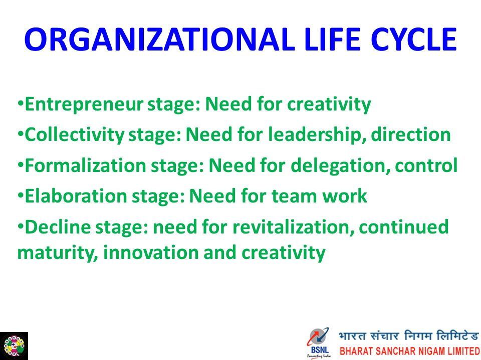 ORGANIZATIONAL LIFE CYCLE Entrepreneur stage: Need for creativity Collectivity stage: Need for leadership, direction Formalization stage: Need for delegation, control Elaboration stage: Need for team work Decline stage: need for revitalization, continued maturity, innovation and creativity