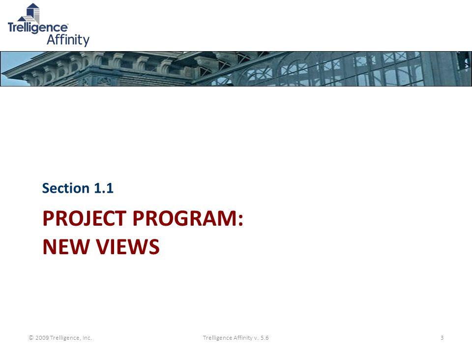 PROJECT PROGRAM: NEW VIEWS Section 1.1 © 2009 Trelligence, Inc.Trelligence Affinity v. 5.63
