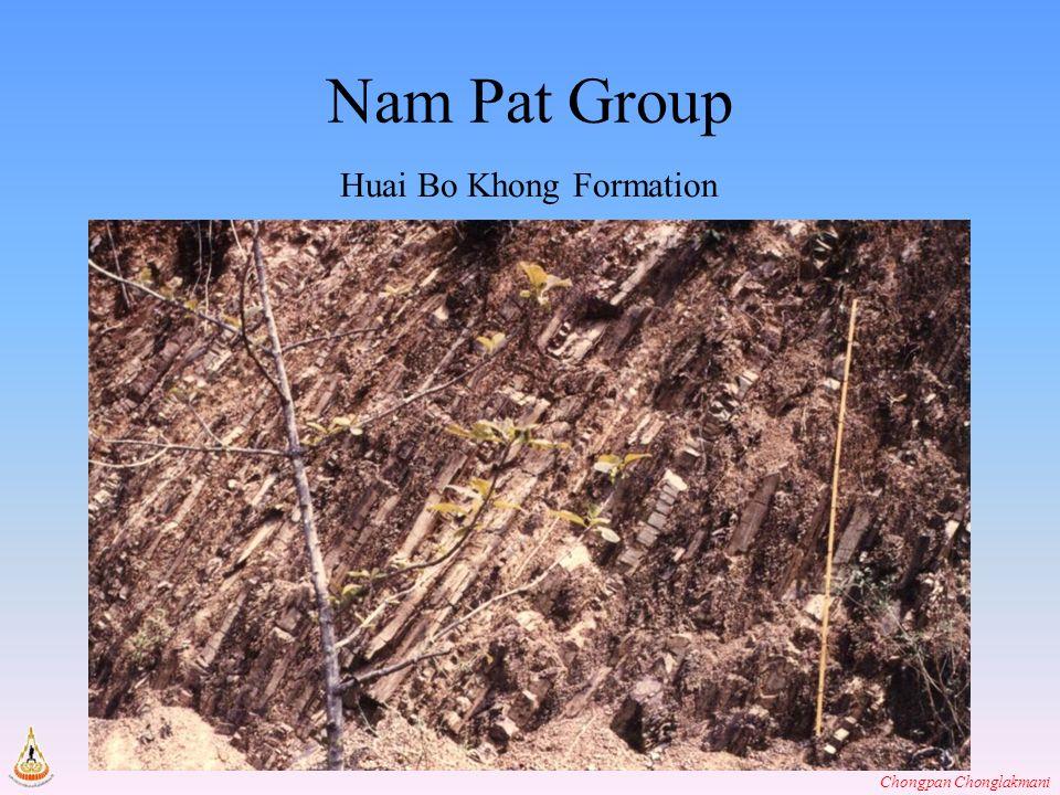 Chongpan Chonglakmani Nam Pat Group Huai Bo Khong Formation