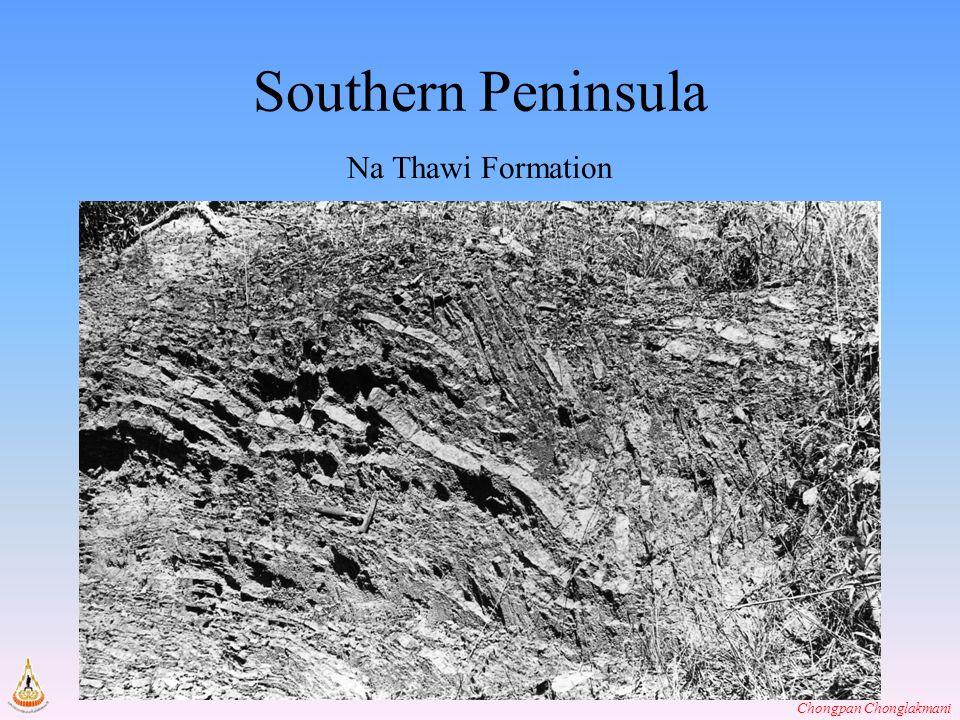 Chongpan Chonglakmani Southern Peninsula Na Thawi Formation