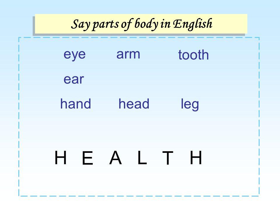 eye ear Say parts of body in English arm tooth handheadleg A E HL T H