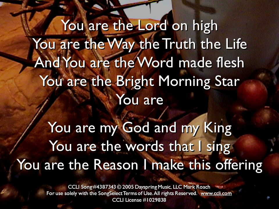 You are the Lord on high You are the Way the Truth the Life And You are the Word made flesh You are the Bright Morning Star You are You are my God and