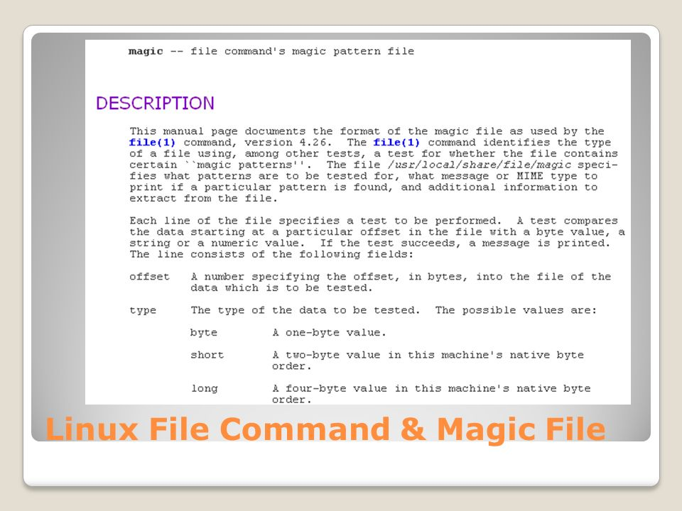 Linux File Command & Magic File
