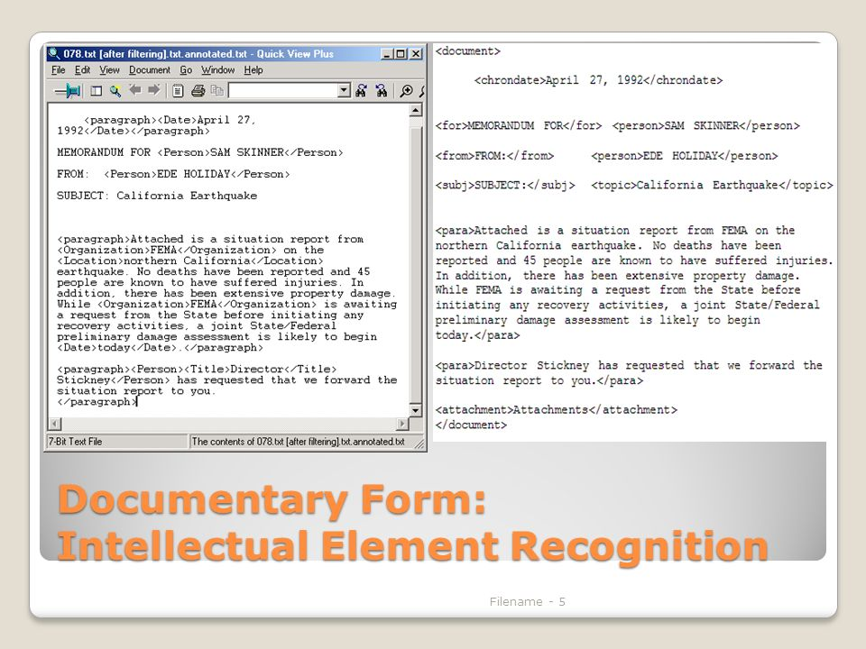 Documentary Form: Intellectual Element Recognition Filename - 5