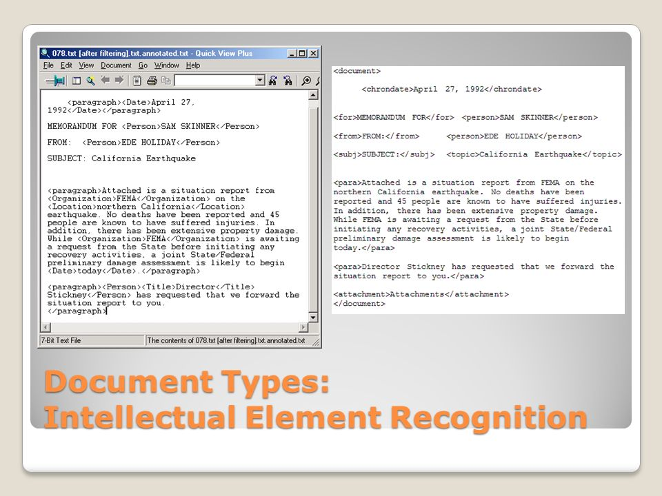 Document Types: Intellectual Element Recognition