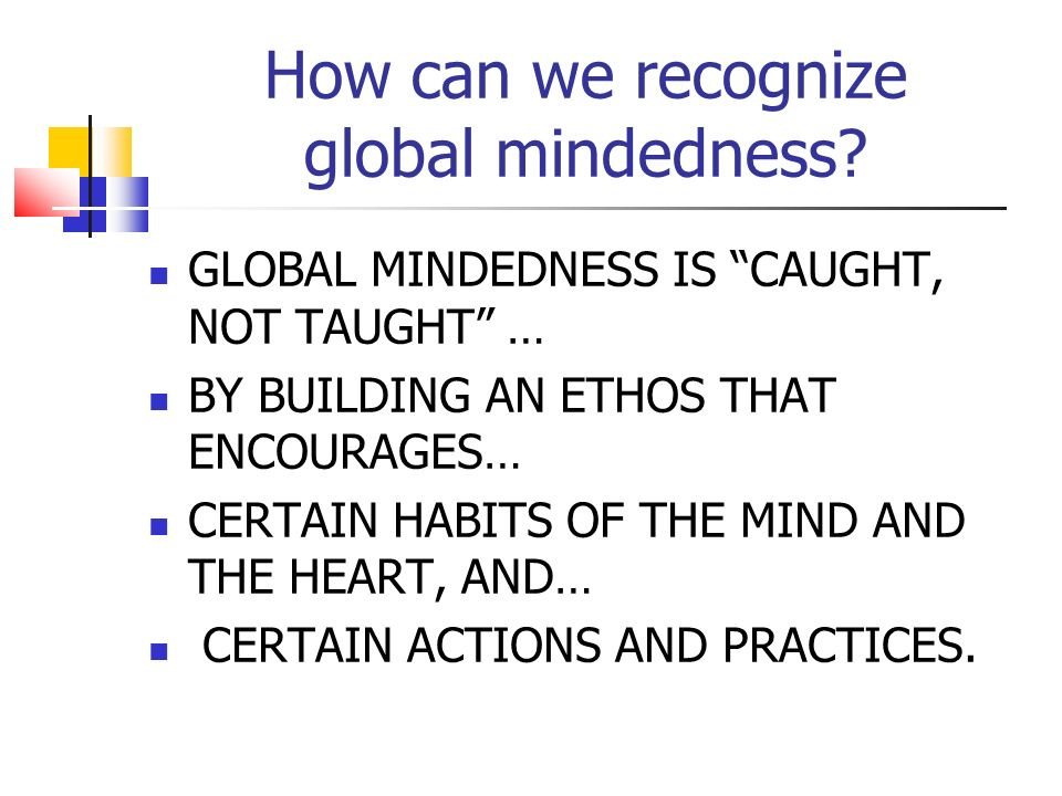 Global mindedness in the school is like the flavours in food: - There are many flavours - It is distinguished more by its absence than by its presence.