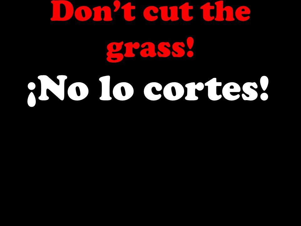 Dont cut the grass! ¡No lo cortes!