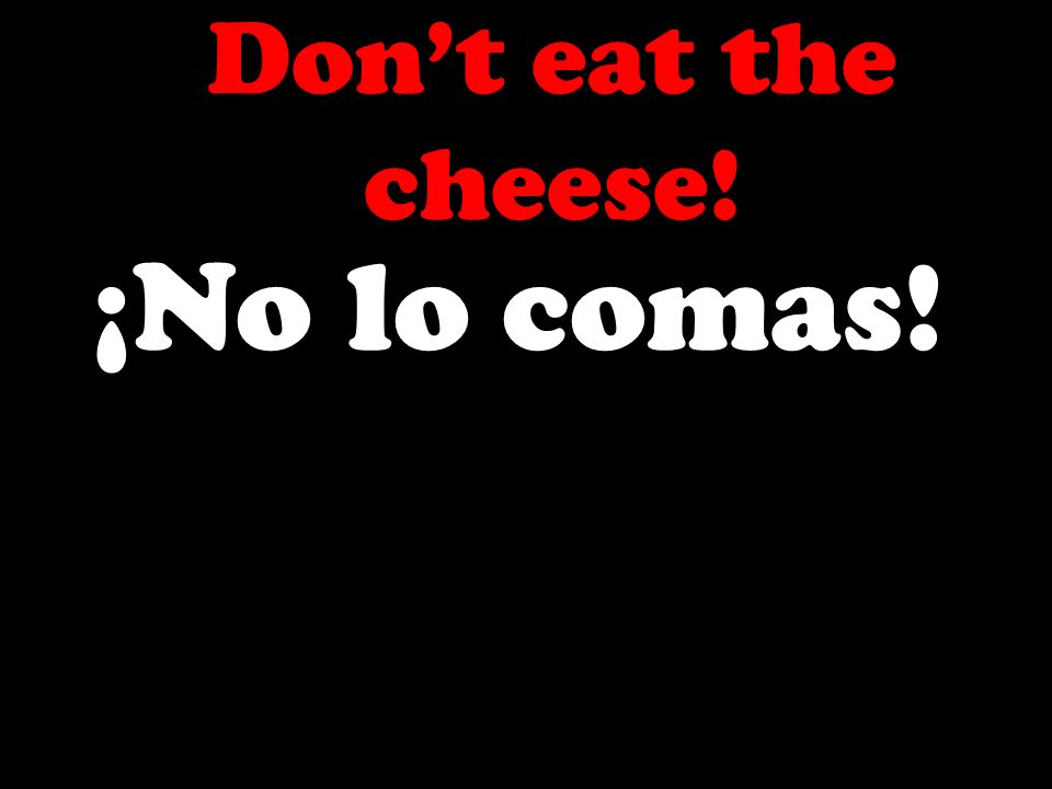 Dont eat the cheese! ¡No lo comas!