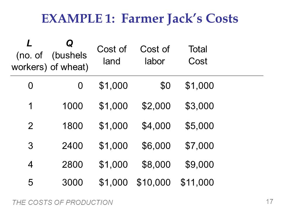 THE COSTS OF PRODUCTION 16 EXAMPLE 1: Farmer Jacks Costs Farmer Jack must pay $1000 per month for the land, regardless of how much wheat he grows. The