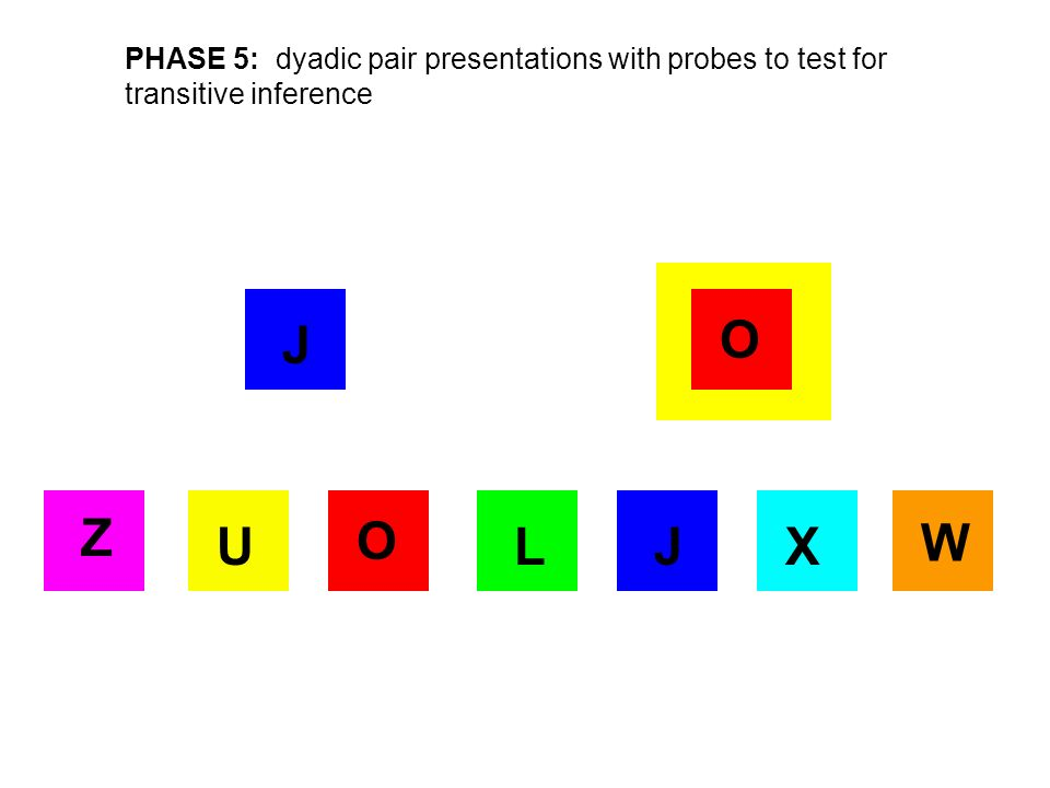 X O J Z UL W PHASE 5: dyadic pair presentations with probes to test for transitive inference O J