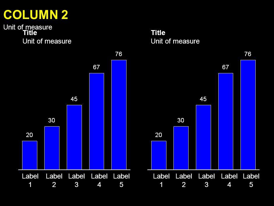 Label 1 Label 2 Label 3 Label 4 Label 5 COLUMN Unit of measure