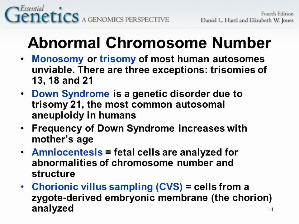 14 Abnormal Chromosome Number Monosomy or trisomy of most human autosomes unviable. There are three exceptions: trisomies of 13, 18 and 21 Down Syndro