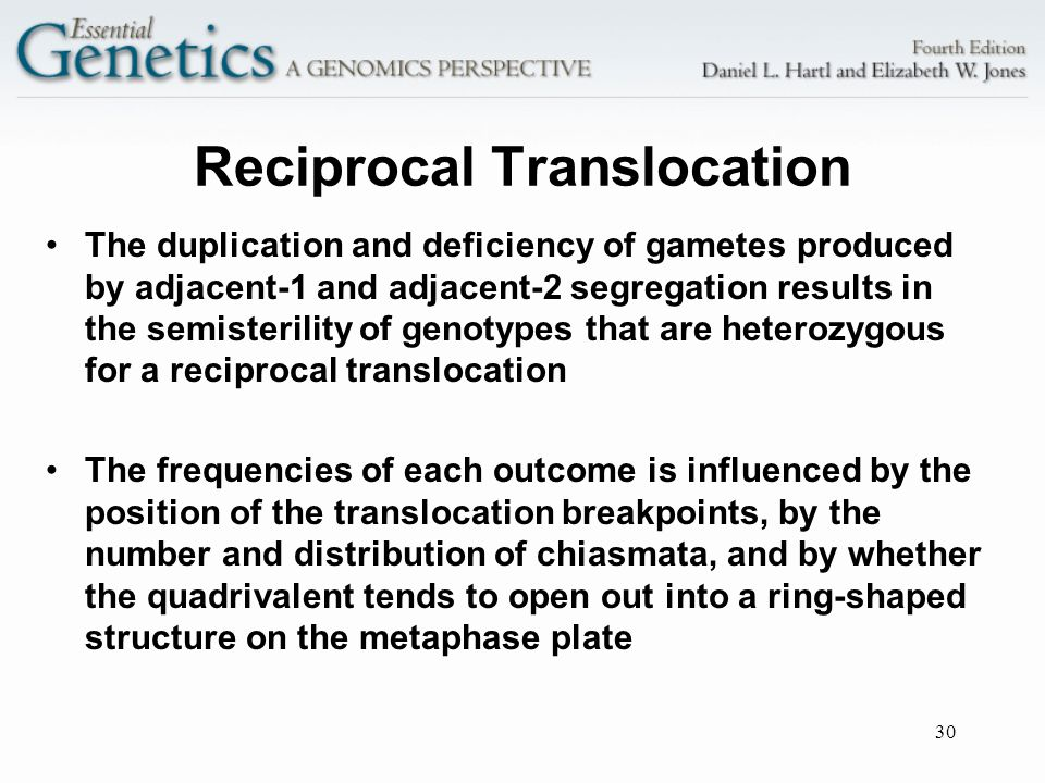 30 Reciprocal Translocation The duplication and deficiency of gametes produced by adjacent-1 and adjacent-2 segregation results in the semisterility o