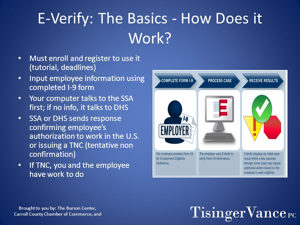 E-Verify: The Basics - Who Can I Verify? Federal Contractors – Can choose to verify entire workforce (and all new hires) OR – Existing employees assig