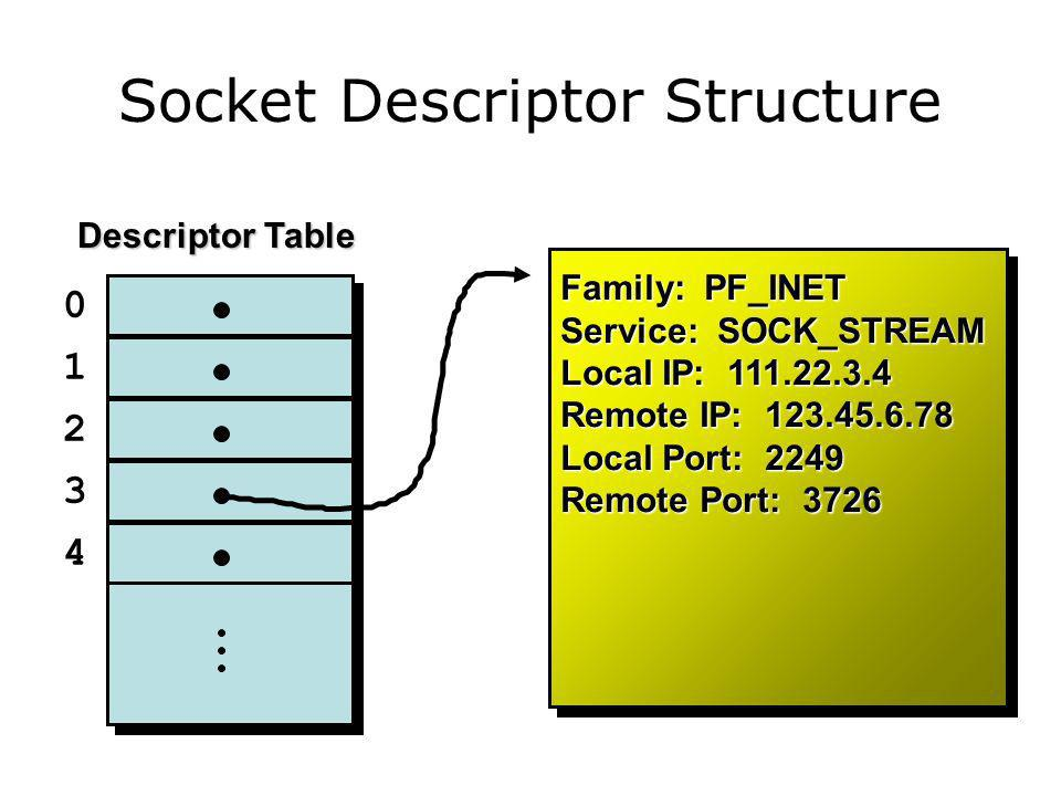 Socket Descriptor Structure Descriptor Table 0 1 2 3 4 Family: PF_INET Service: SOCK_STREAM Local IP: 111.22.3.4 Remote IP: 123.45.6.78 Local Port: 2249 Remote Port: 3726 Family: PF_INET Service: SOCK_STREAM Local IP: 111.22.3.4 Remote IP: 123.45.6.78 Local Port: 2249 Remote Port: 3726