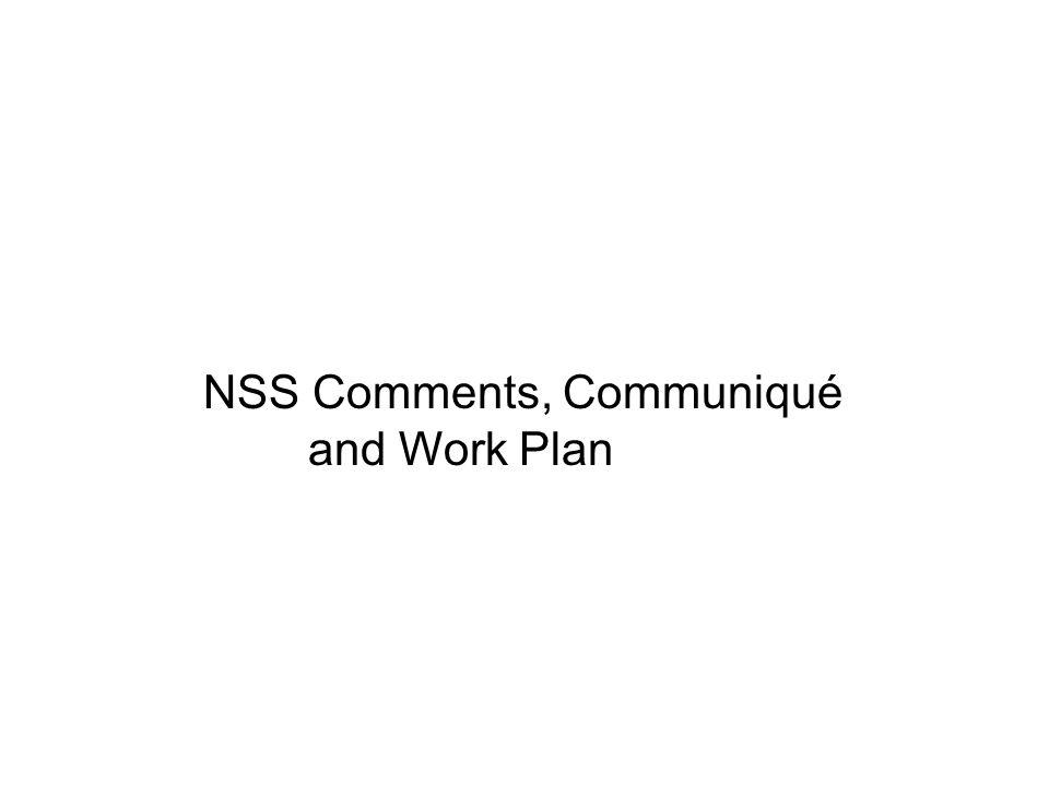 NSS Comments, Communiqué and Work Plan