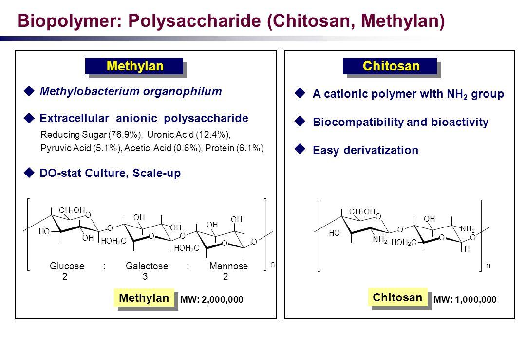 Biopolymer: Polysaccharide (Chitosan, Methylan) Methylobacterium organophilum Extracellular anionic polysaccharide Reducing Sugar (76.9%), Uronic Acid