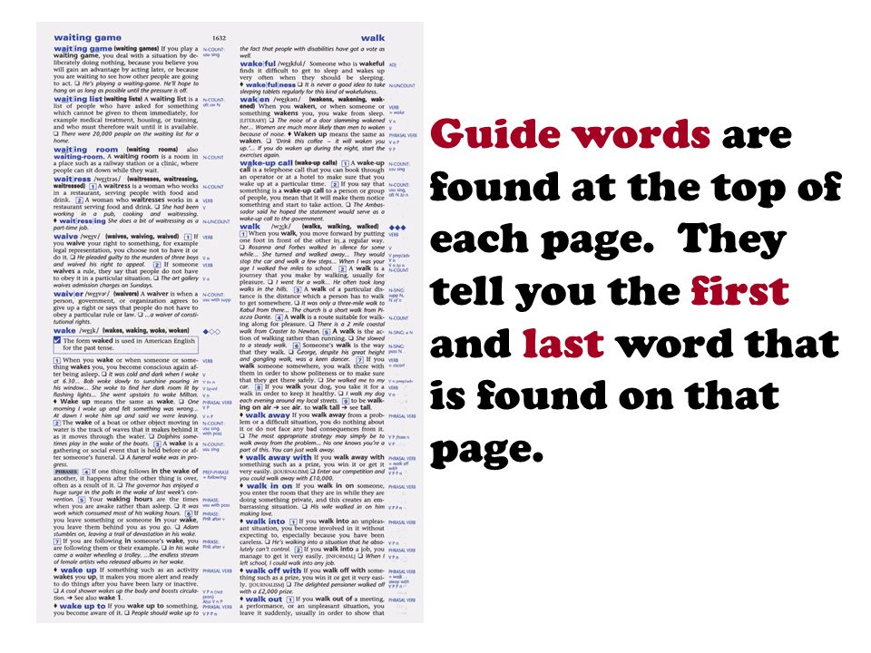 Guide words are found at the top of each page. They tell you the first and last word that is found on that page.
