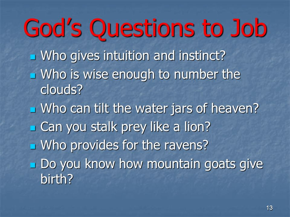 Gods Questions to Job Who gives intuition and instinct.