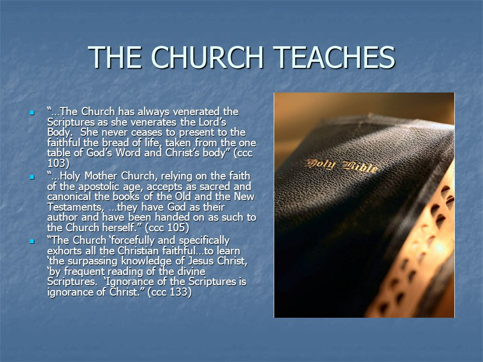 THE CHURCH TEACHES …The Church has always venerated the Scriptures as she venerates the Lords Body. She never ceases to present to the faithful the br