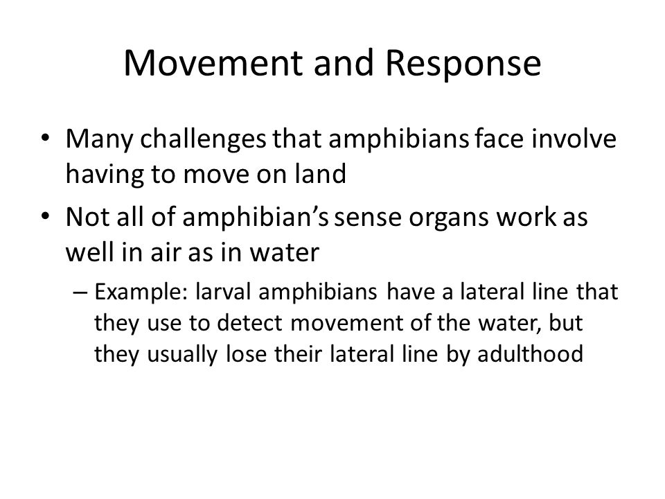 Movement and Response Many challenges that amphibians face involve having to move on land Not all of amphibians sense organs work as well in air as in
