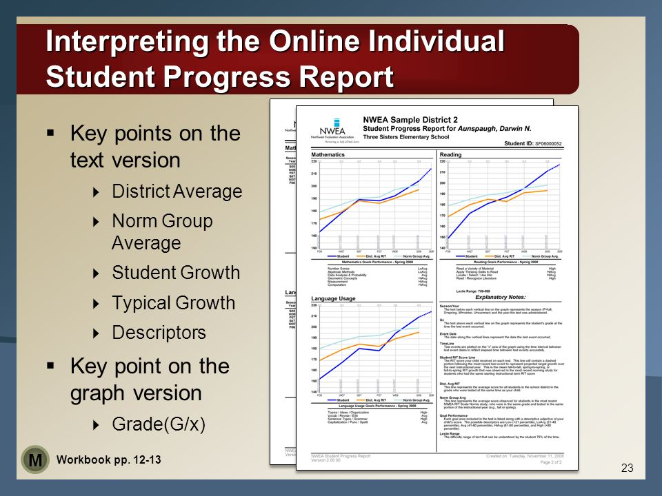 Interpreting the Online Individual Student Progress Report Key points on the text version District Average Norm Group Average Student Growth Typical G