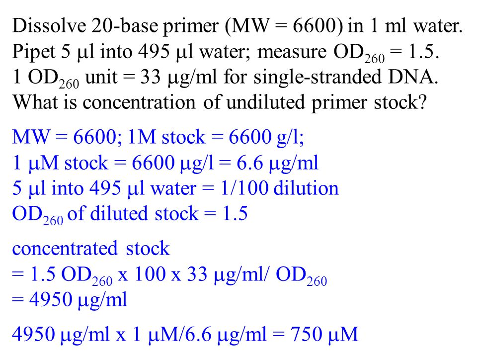 Dissolve 20-base primer (MW = 6600) in 1 ml water.