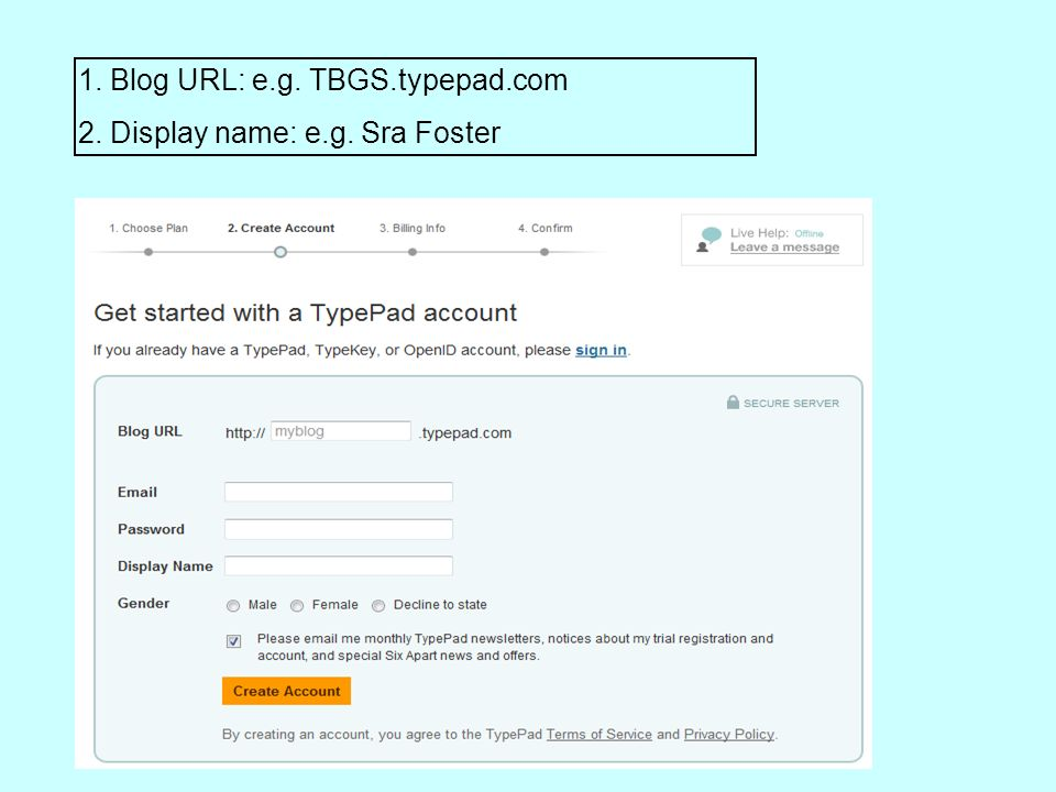 1. Blog URL: e.g. TBGS.typepad.com 2. Display name: e.g. Sra Foster