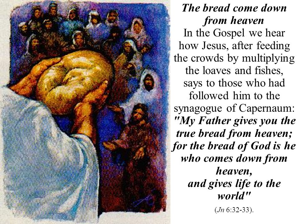 The bread come down from heaven In the Gospel we hear how Jesus, after feeding the crowds by multiplying the loaves and fishes, says to those who had