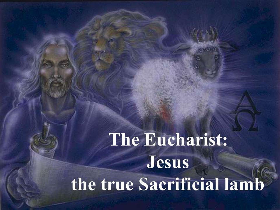 The Eucharist: Jesus the true Sacrificial lamb