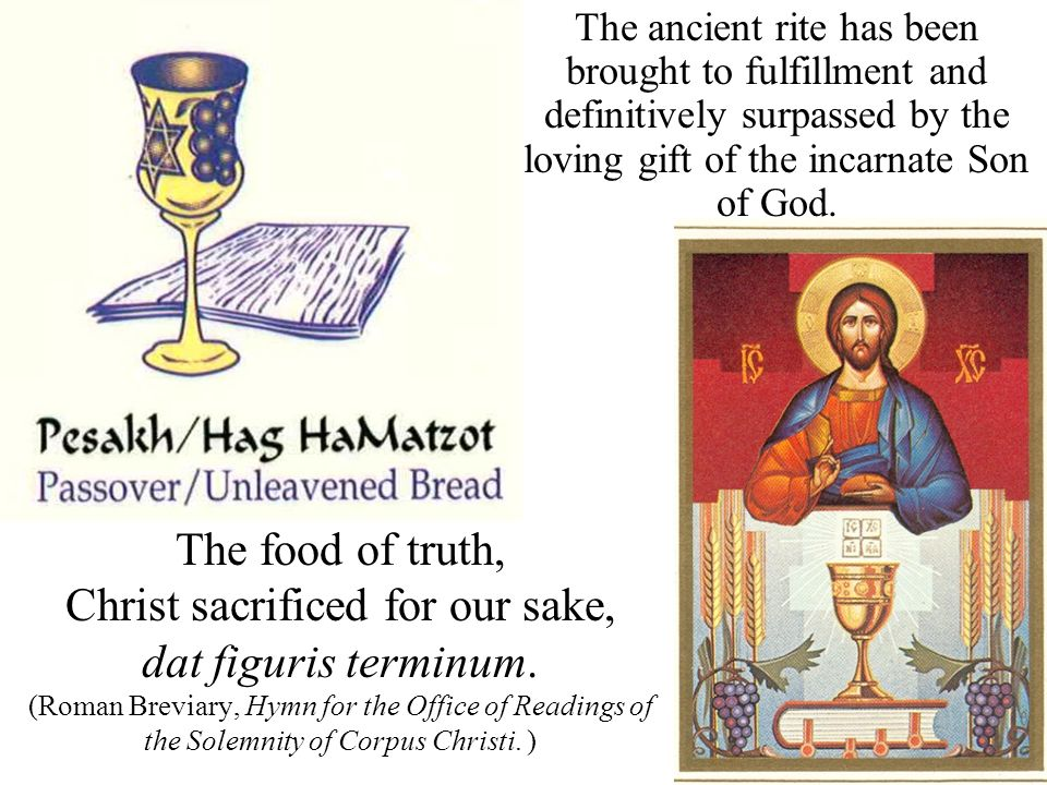 The food of truth, Christ sacrificed for our sake, dat figuris terminum.