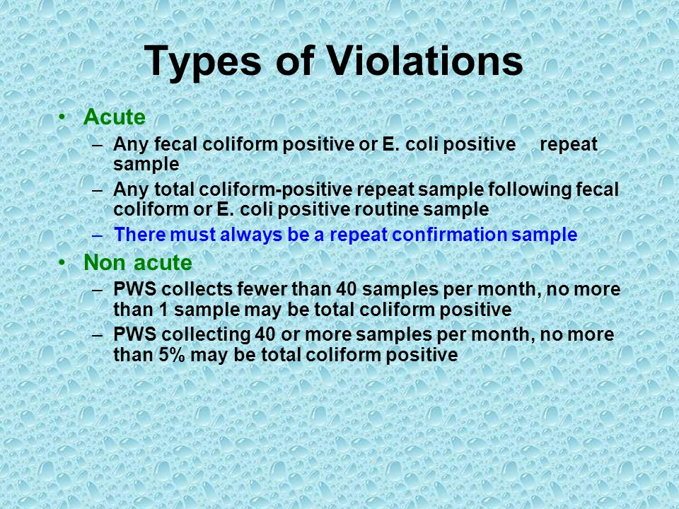 Types of Violations Acute –Any fecal coliform positive or E. coli positive repeat sample –Any total coliform-positive repeat sample following fecal co
