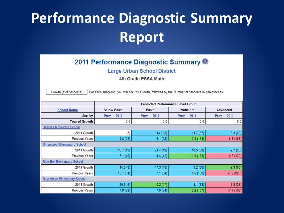 Performance Diagnostic Summary Report