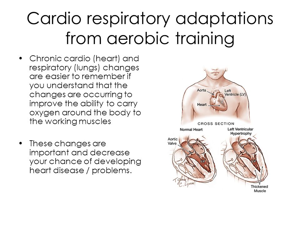Chronic adaptations to Aerobic training RESPIRATORY ADAPTATIONS Just as there are cardiovascular adaptations to AEROBIC training there are also respiratory adaptations.