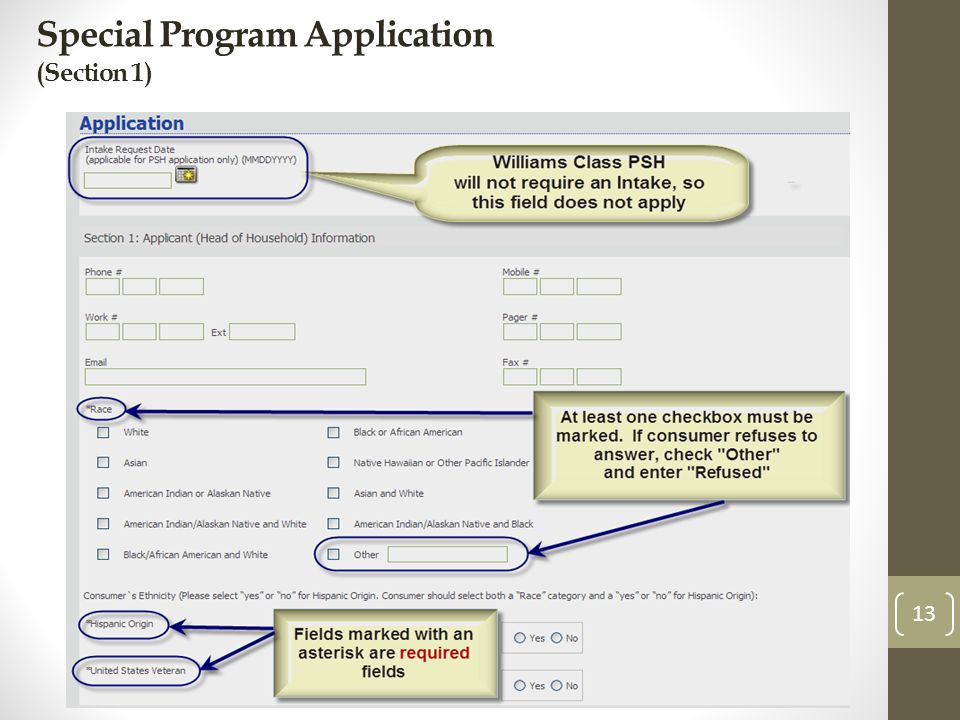Special Program Application (Section 1) 13
