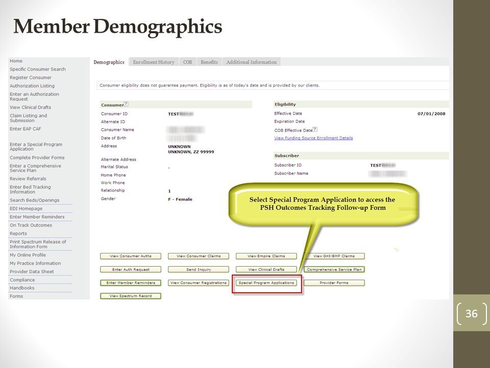 Member Demographics 36