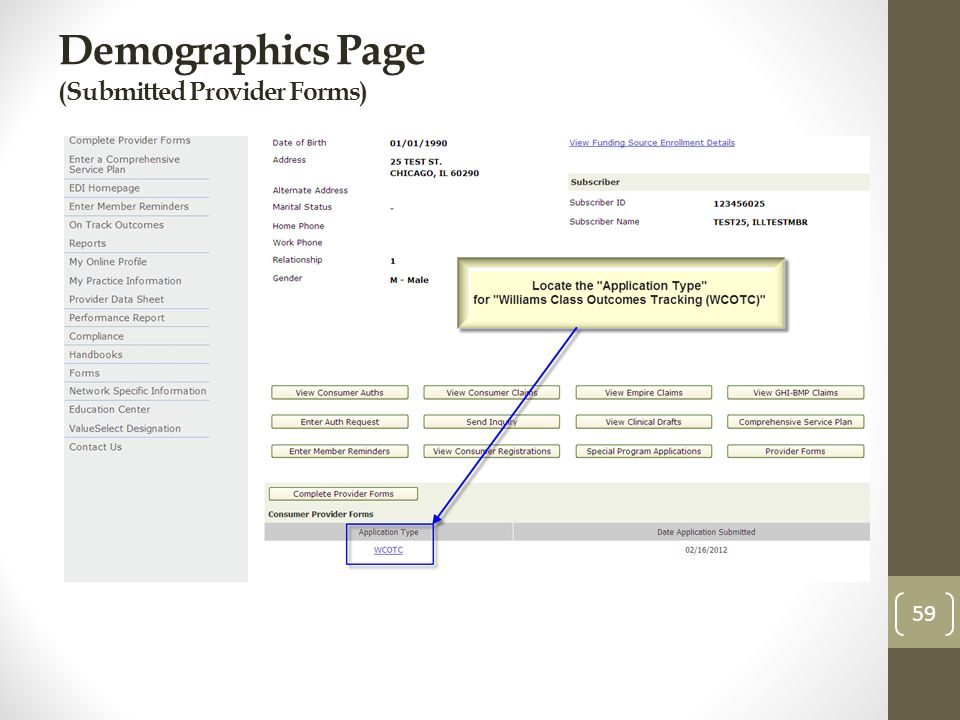 Demographics Page (Submitted Provider Forms) 59