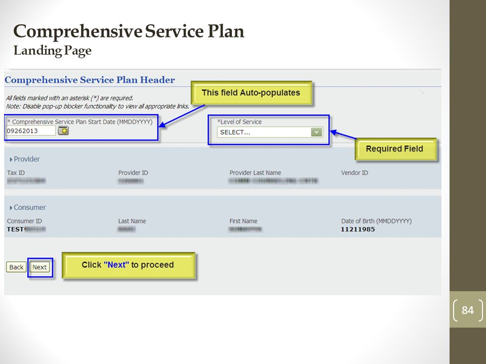 Comprehensive Service Plan Landing Page 84