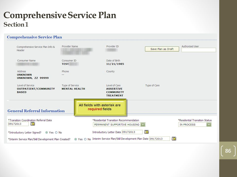 Comprehensive Service Plan Section 1 86