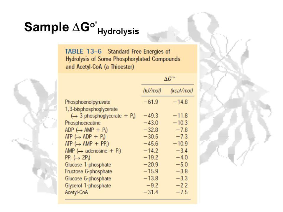 Sample G o Hydrolysis