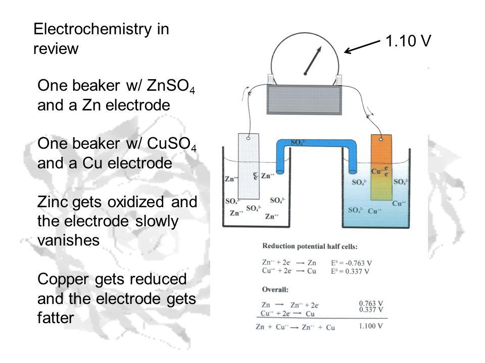1.10 V Electrochemistry in review One beaker w/ ZnSO 4 and a Zn electrode One beaker w/ CuSO 4 and a Cu electrode Zinc gets oxidized and the electrode
