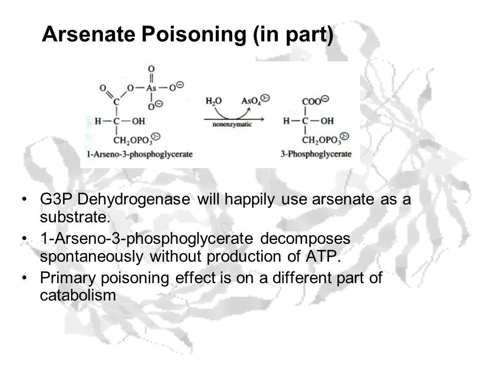 Arsenate Poisoning (in part) G3P Dehydrogenase will happily use arsenate as a substrate. 1-Arseno-3-phosphoglycerate decomposes spontaneously without