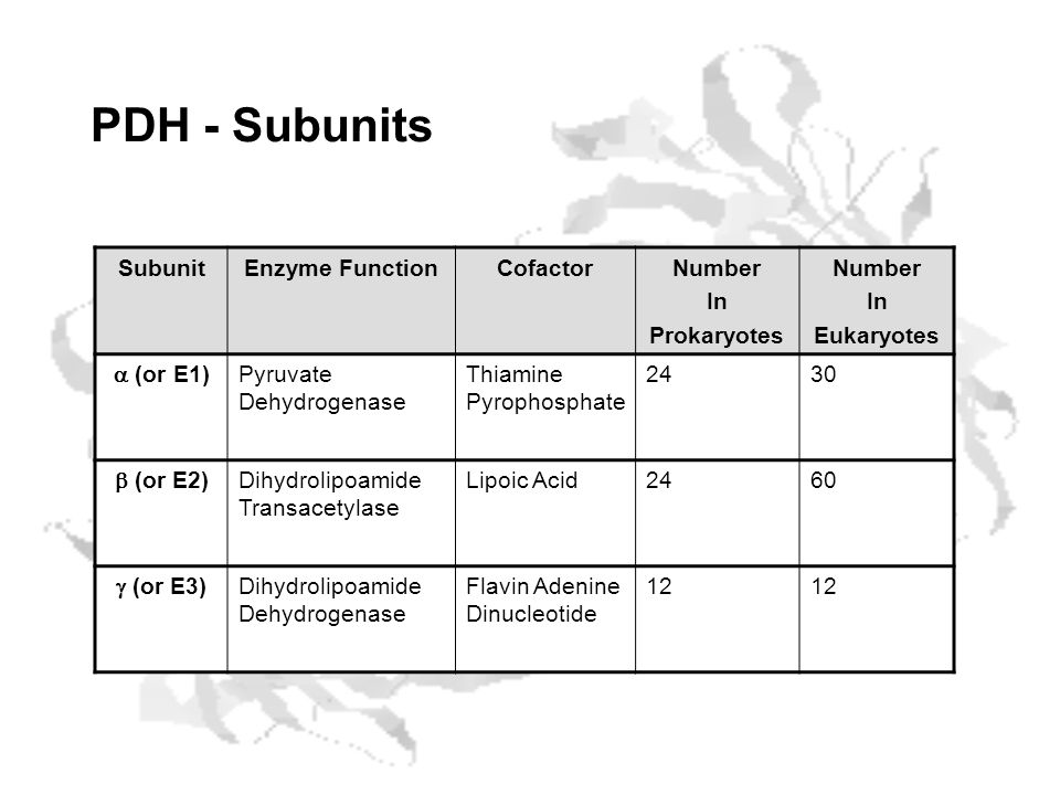 PDH - Subunits SubunitEnzyme FunctionCofactorNumber In Prokaryotes Number In Eukaryotes (or E1) Pyruvate Dehydrogenase Thiamine Pyrophosphate 2430 (or