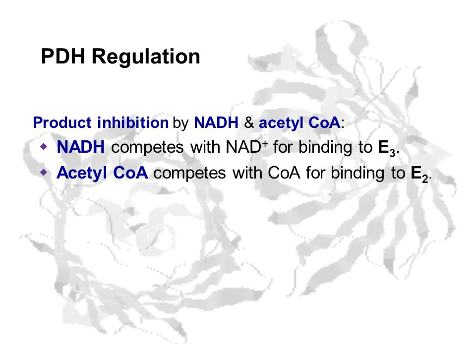 Product inhibition by NADH & acetyl CoA: NADH competes with NAD + for binding to E 3. Acetyl CoA competes with CoA for binding to E 2. PDH Regulation